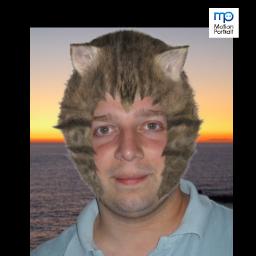 Jeanviet en chat